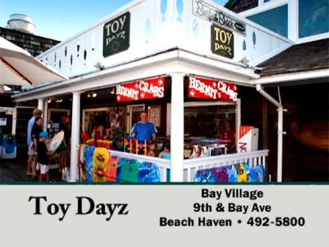 Toy Dayz