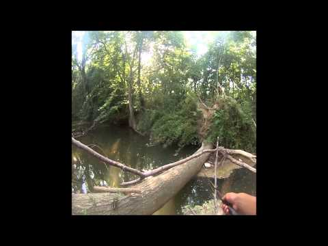 Summer creek fishing for Bluegill and Bass