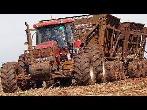 Landwirtschaft in Südamerika: Brasilien, Argentinien  ...