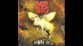 Mr. Big - Undertow