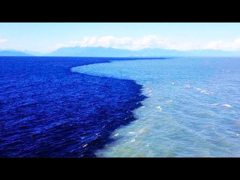 Fresh Water Meets Sea Water --THE GULF OF ALASKA- Why don't the Atlantic and Pacific Ocean mix?