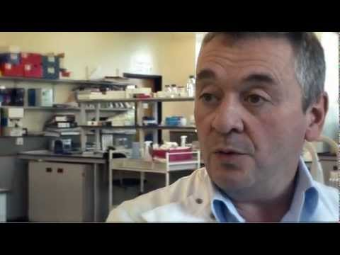 diabetes uk - Professor Nigel Brunskill of the University of Leicester, talks about his research into C-peptide and its potential benefits in the fight against diabetes.
