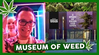 Inside the MUSEUM OF WEED by WeedMaps by That High Couple