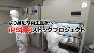 [ScienceNews2014]より身近な再生医療へ iPS細胞ストックプロジェクト(2015年4月8日配信)
