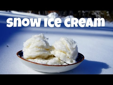 Renee's Recipe Blog: Snow Day SNOW ICE CREAM!!!!!