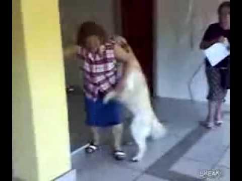 To Doggy Style tis giagias !!!! xaxaxaxaxa