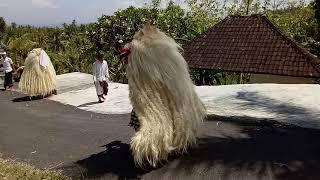 Video Ratu Gede Ayu Mas napak pertiwi lan Penyamblehan ring Setra br. Cemlagi, Nusa Penida MP3, 3GP, MP4, WEBM, AVI, FLV Oktober 2018