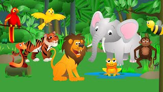 Best Animal Sounds Song (Jungle)