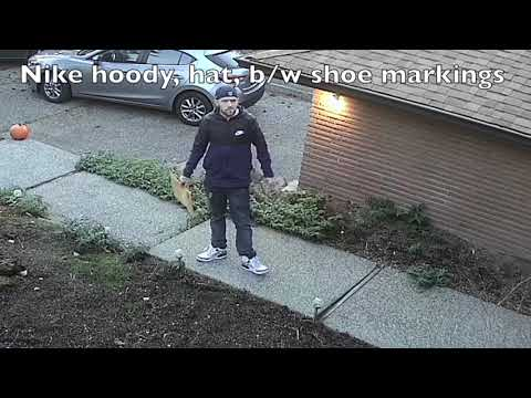 How an idiot steals your packages: Drive your green Windstar into driveway, stare directly at and notice camera, return with hood up and hat turned around 45m later.