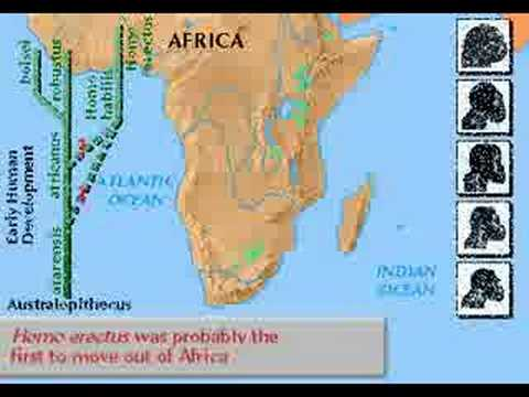 Early Humans :  4 million  years ago  to 10 000  B.C.