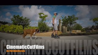 """https://www.patreon.com/FloridaLifestyleVlogsMy Best Friend """"Boxer Dog Django""""Gopro Karma Grip: https://goo.gl/n2IDtiDrone: https://goo.gl/32a7Q1Gopro Hero5: https://goo.gl/HfRjGqCanon G7X: https://goo.gl/vsm5ZOSubscribe to my Channel and enjoy more amazing Videos of Florida..ThanksCheck out my German Vlog Channel: https:www.youtube.com/c/FloridaLifestyleVlogsMusic by https://soundcloud.com/ehrling"""