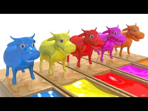 Learn Colors with Special Cow Transporter Truck #h | Learn Colors Cow Race Water Slides