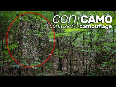 CONCAMO Teaser - DAS Tarnmuster der Zukunft?