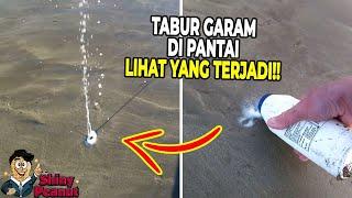 Video Gak Disangka! Sesuatu Hidup Keluar Dari Dalam Pasir Ini MP3, 3GP, MP4, WEBM, AVI, FLV April 2019