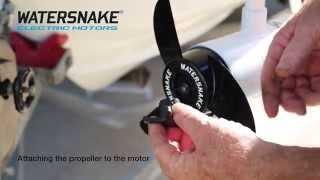 mqdefault watersnake shadow swdr54 54 electric trolling motor maintenance watersnake shadow wiring diagram at soozxer.org