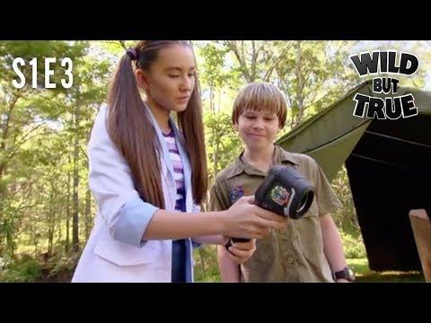 ROBERT IRWIN - Wild But True | Episode 3