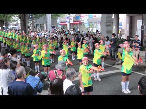 若松小学校よさこい同好会(2014よさこいin府中・大國魂神社ステージ会場)