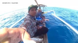 Download Lagu fishing bali Mp3