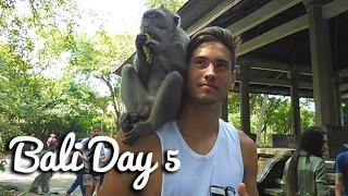 This is the last proper vlog before the monatge! hope you guys enjoy as always :) https://www.instagram.com/brandonroode/Twitter: @itsbrandononTags: Itsbrandon, Its Brandon, refugee, refugeee, refugeegaming, refugeeegaminng, fun, cats, lol, vlog, bali, monkeys, ubud