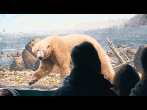 Rostock: Eis-n und Meereswelten im Rostocker Zoo - Ex ...