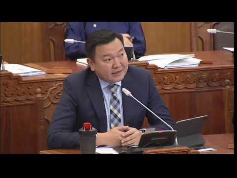 Н.Учрал: Хятад ажилчид 90 хоногийн визатай орж ирээд барилгын компанид ажиллаад мөнгө аваад гарч байна