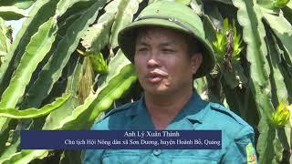Nông dân huyện Hoành Bồ sản xuất kinh doanh giỏi