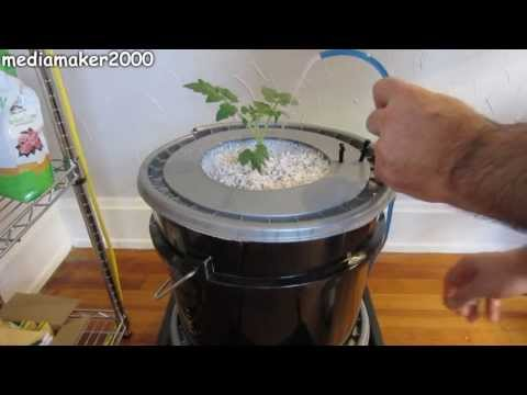 Single Dutch Bucket Hydroponic System - Easy DIY - Patio - Balcony - Winter Gardening