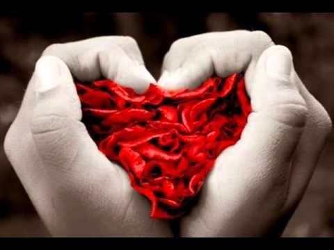 ميت وردة ووردة -ايلي صافي