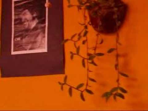 Video van Posada Mi Casa