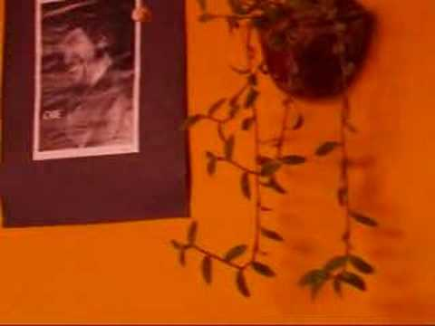 Posada Mi Casa视频