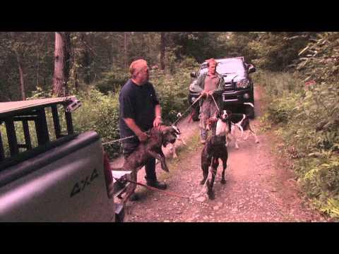 BLACK BEAR HUNT (видео)