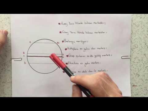 6.Sınıf Sosyal Bilgiler Paralel ve Özellikleri Video Anlatım