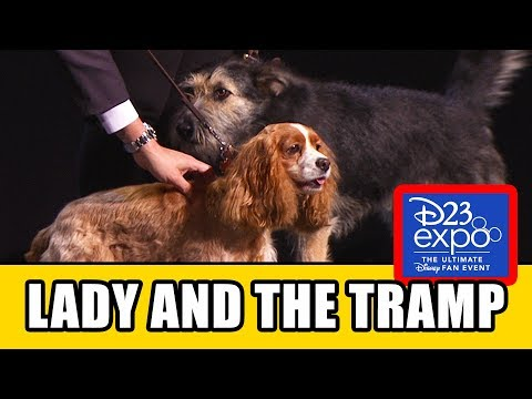 LADY AND THE TRAMP D23 Panel & Trailer