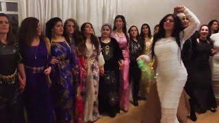 Newroz 2016 Karim Gulani Horsens Denmark, Kurdish dance halparke Govenda, Govend, Haparki , halparke kurdi, Karim Gulani, cizirê botan, Mem U zin, Kürtçe, Kü...