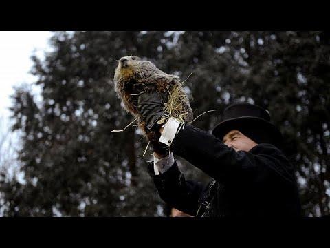 Ημέρα της Μαρμότας: Ο Πανξατόνεϊ Φιλ δεν είδε τη σκιά του…