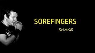 Video Snake