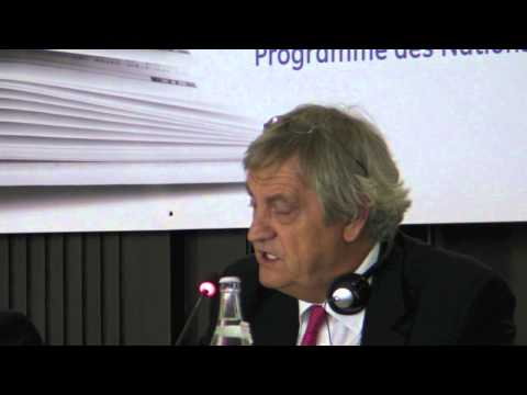 Nicholas Haysom: Constitutional Processes (Tunis, July 5th, 2011)