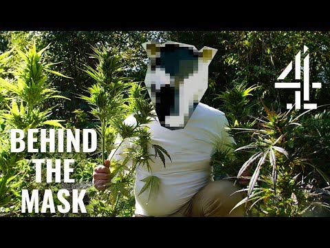 I Grow Cannabis On Other People's Land | Behind The Mask