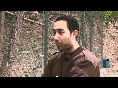 Belgrade Zoo 2011 Episode 2 Part 3