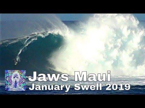 Jaws Maui - January Swell 2019