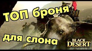 Black Desert (RU) - Прокачай своего слона!