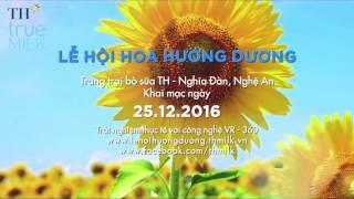Phim giới thiệu về cánh đồng & lễ hội Hoa Hướng Dương