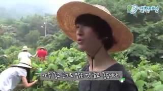 Wanju-gun South Korea  City new picture : [살기좋은 농촌마을_Korea Travel] 전북 완주 경천애인마을_Gyeongcheon-Lovers Village