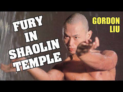 Wu Tang Collection - Fury in Shaolin Temple ( Mandarin with English Subtitles)