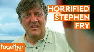 Stephen Fry Horrified by Candiru Fish | Last Chance to See