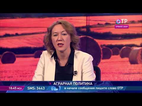 Ольга Башмачникова: В идеале за холдингами должны остаться функции интеграторов, а первичный этап сельскохозяйственного производства - естественным образом отойти к фермерам