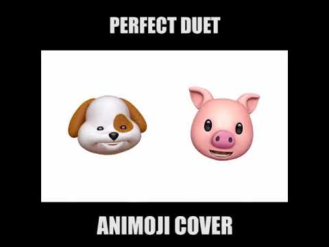 Perfect Duet - Ed Sheeran & Beyoncé  Cover By Dog Face & Pig Face In IPhoneX