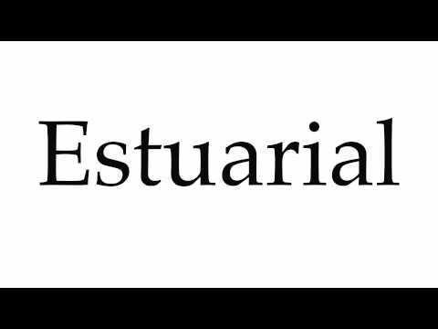 How to Pronounce Estuarial