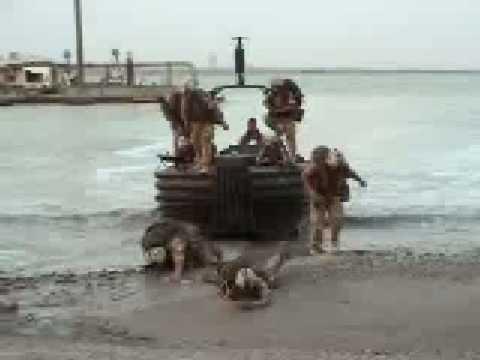 Desembarco de Marines