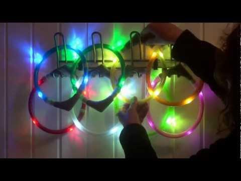 Leuchtie Leuchthalsband Leuchtring Premium Plus Halsband | HUND-unterwegs.de